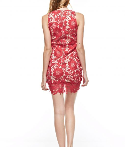 Alila Boutique Red Lace Dress