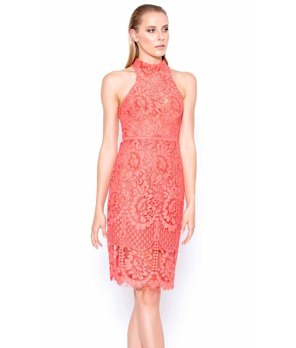 793fca96df6 Alila Boutique Coral Halter Neck Lace Dress