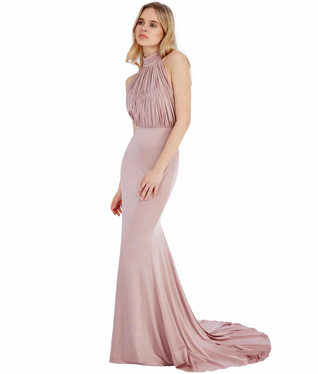 Alila-Blush-Backless-long-Dress-City-Goddess-front