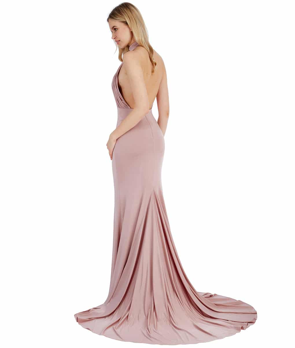 Alila Blush Backless Gown