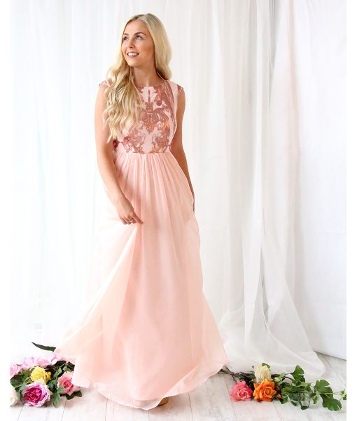 Alila-Blush-Chiffon-evening-dress-Bariano
