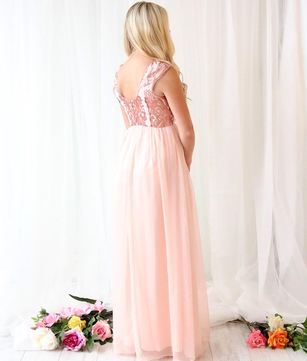 Alila-Blush-Chiffon-long-gown-Bariano