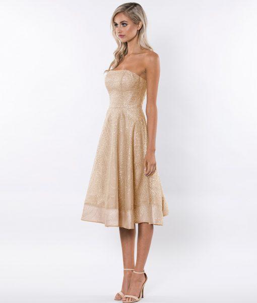 Alila-Gold-Strapless-glitter-prom-dress-Bariano