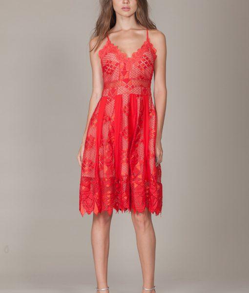 Alila-Red-lace-midi-strappy-dress-for-races-Foxie-Dox-Calla-dress